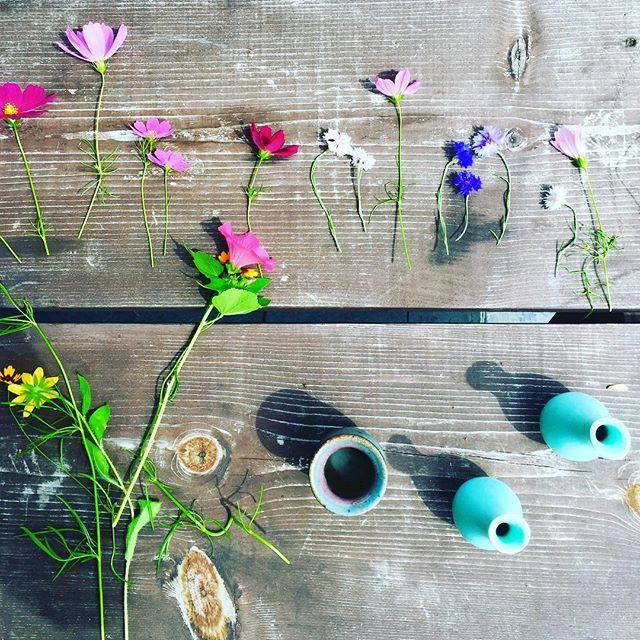 """I must have flowers, always and always"" - Claude Monet  #kmtherapyandwellness #summerflower #backyardgarden"
