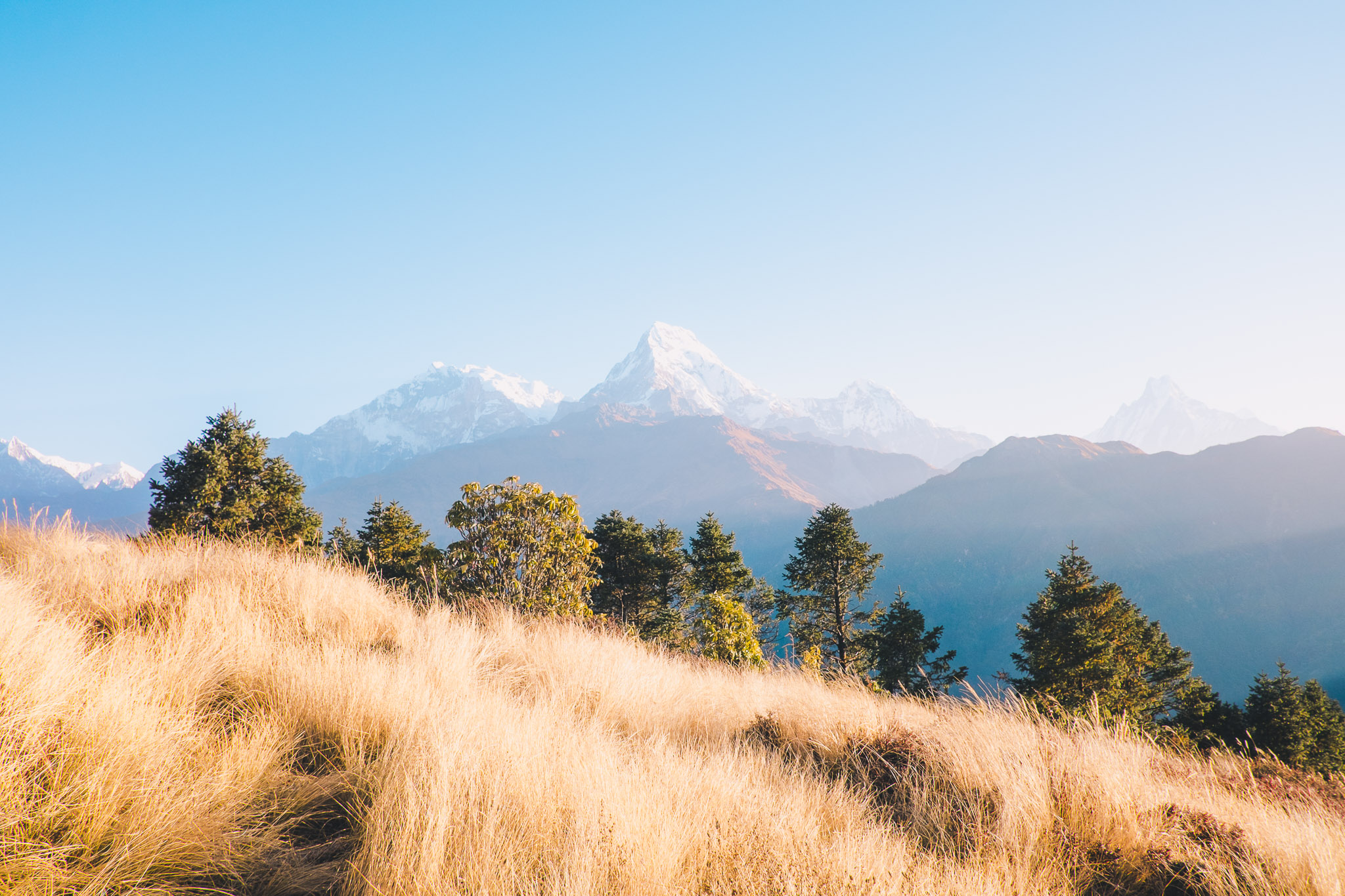 nepal-pokhara-ghorepani-poon-hill-mountain-teahouse-trek-26.jpg