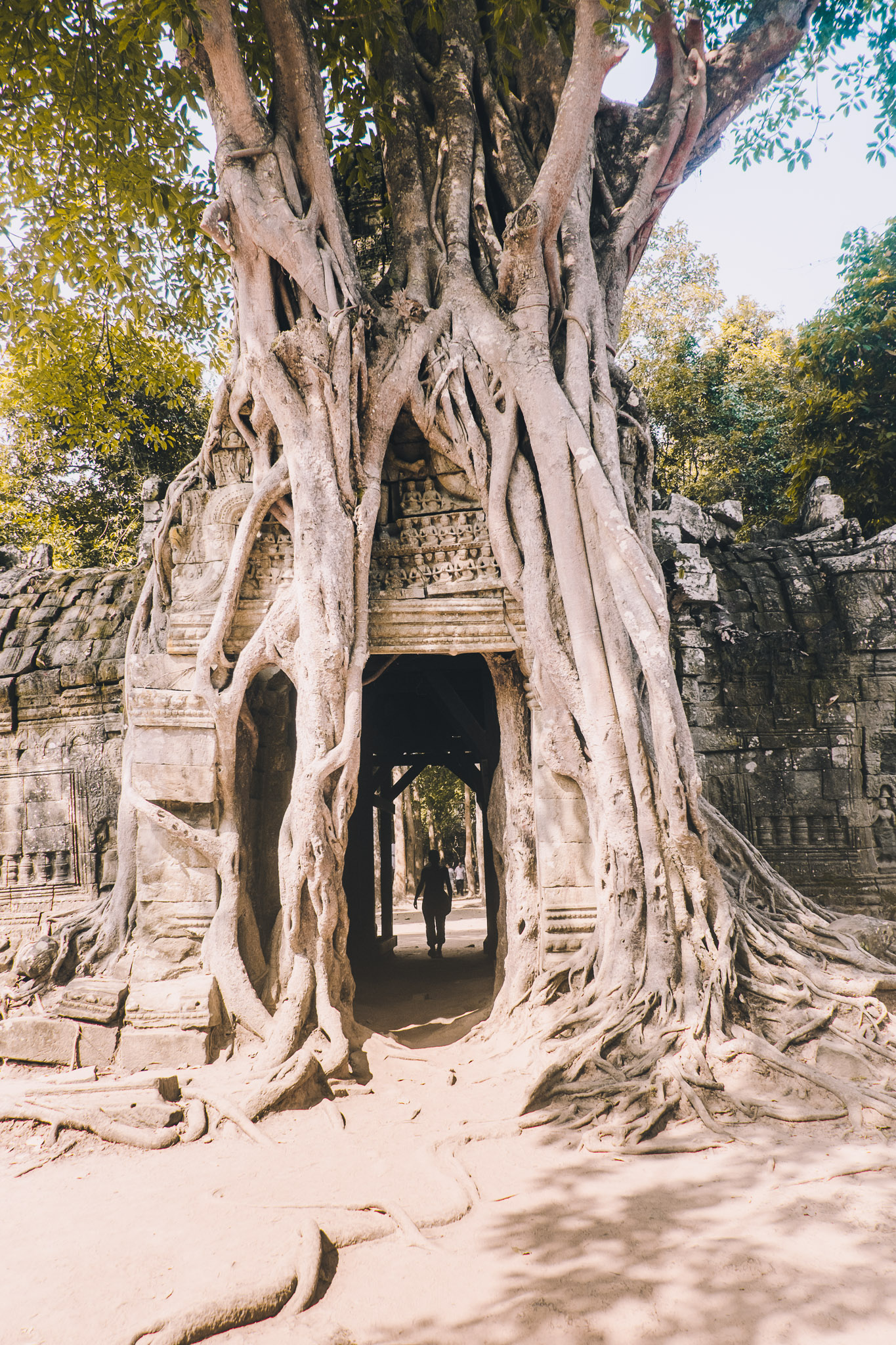 cambodia-siem-reap-temple-7.jpg