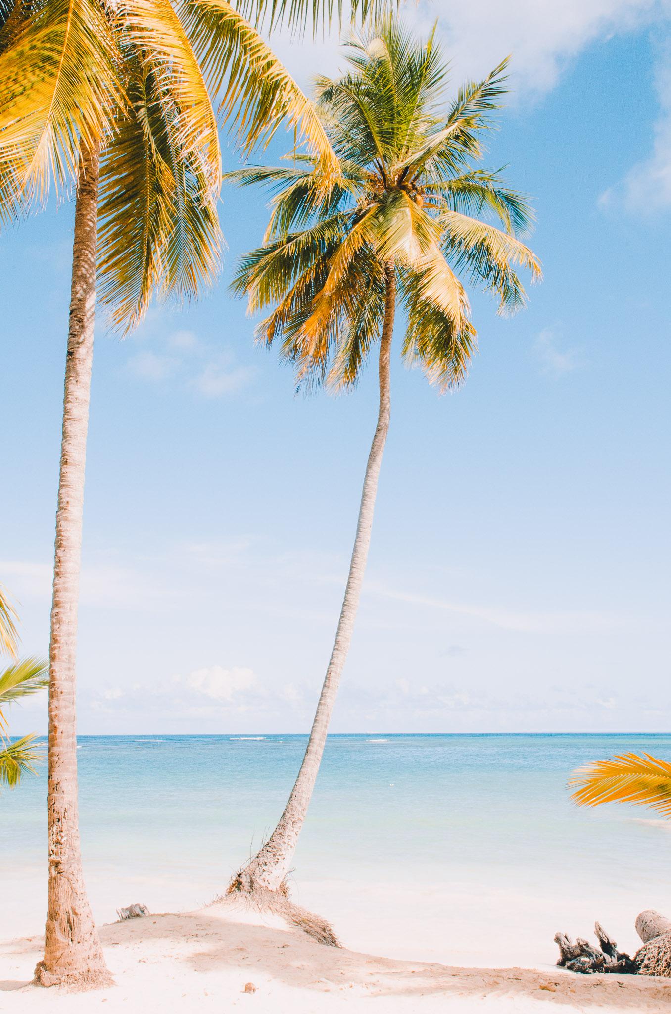 dominican-republic-2.jpg