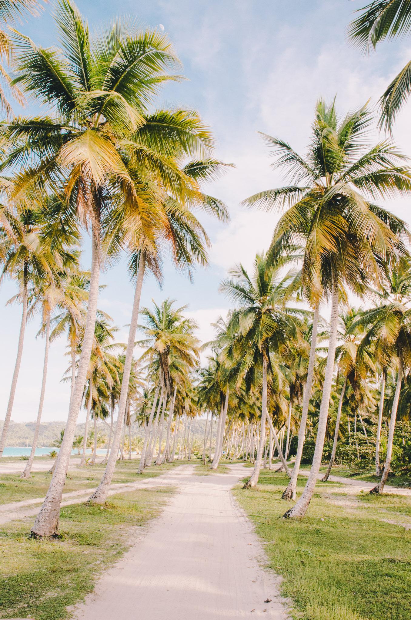 dominican-republic-9.jpg