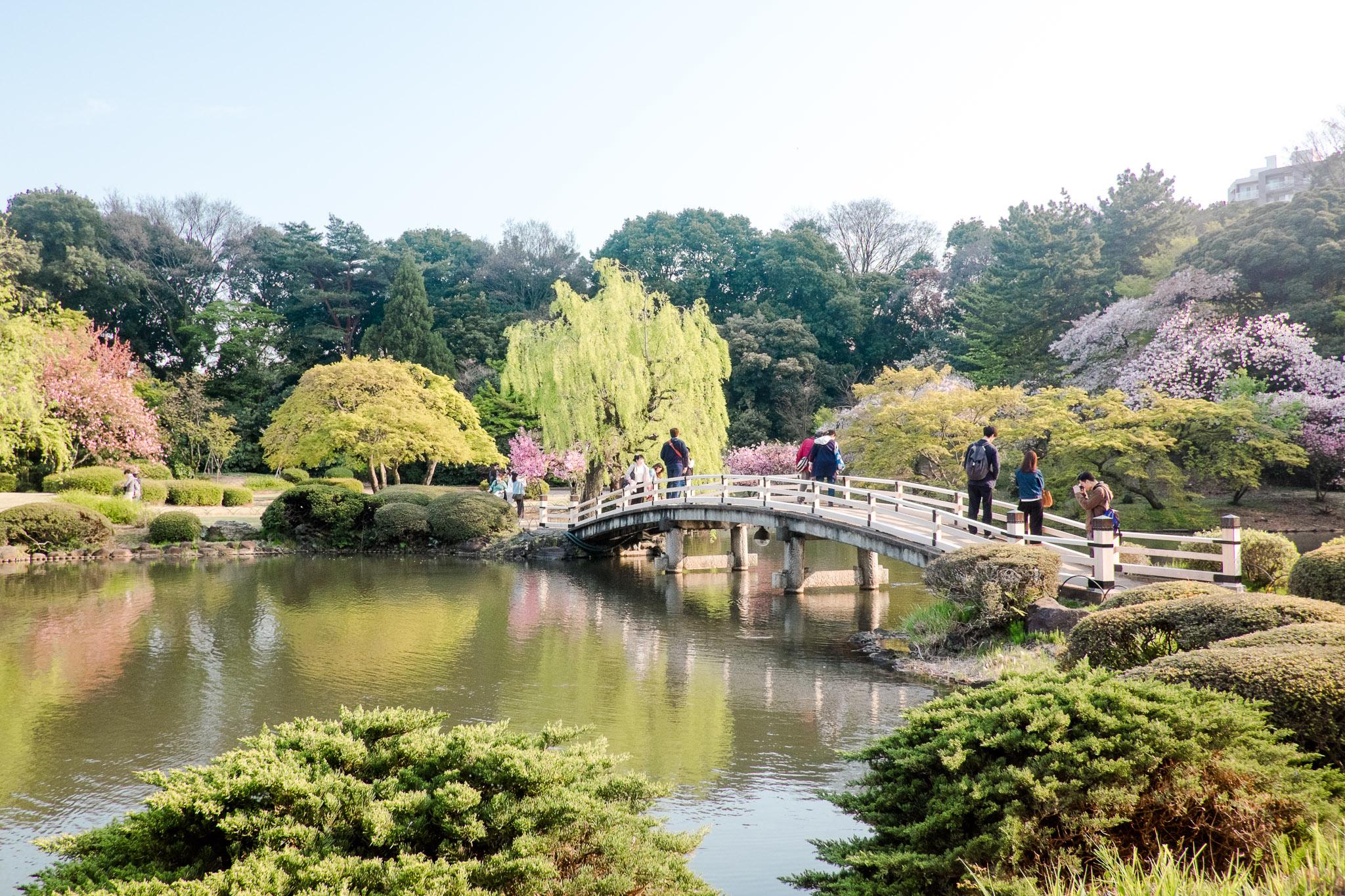 japan-tokyo-garden.jpg
