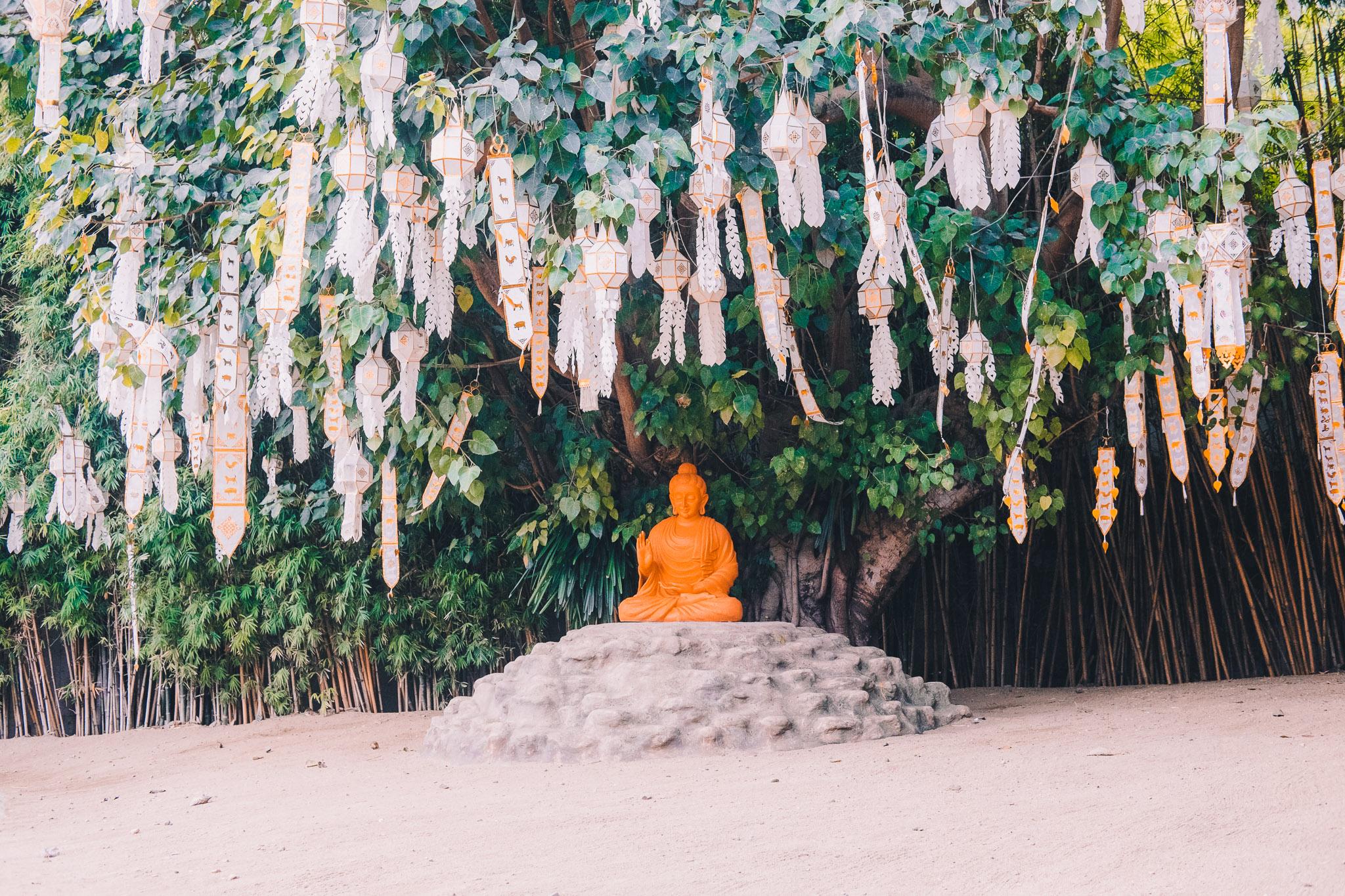 thailand-chiang-mai-4.jpg
