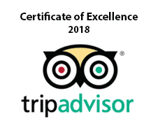 tripadvisor-4.png