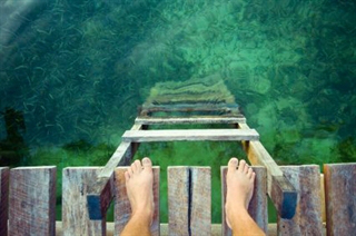 jump-in-with-both-feet-take-the-plunge.jpg