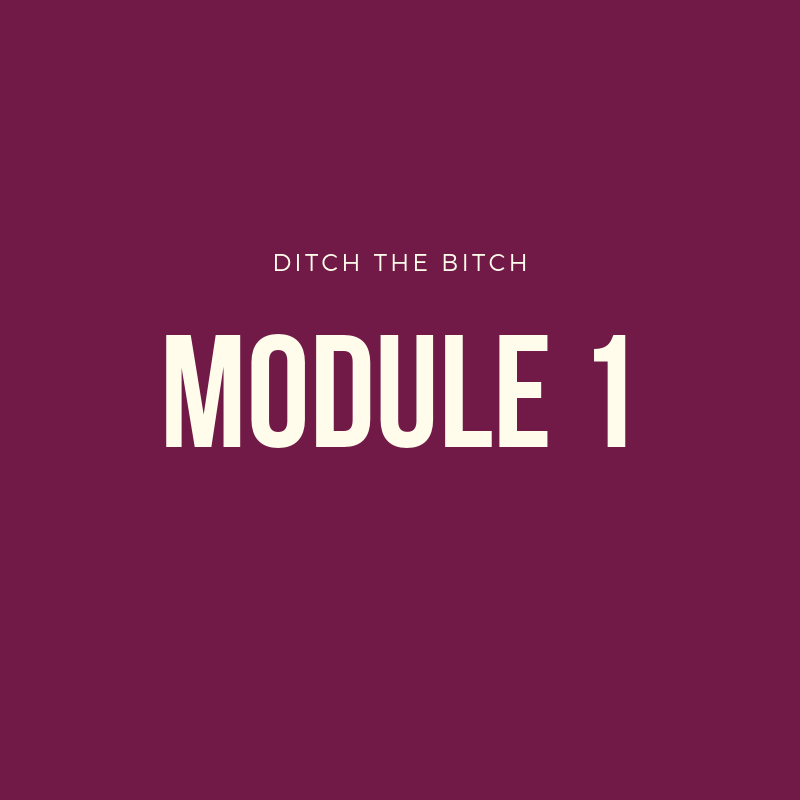 Module 1: YOUR DTB EXIT STRATEGY - -Intro to my Signature Ditch Method to get off the pill without negative side effects-Why you need a plan to come off the pill-What your timeline will look like-Easily crafting your unique plan-Special considerations in crafting YOUR plan-Ditch the Bitch Plan Workbook