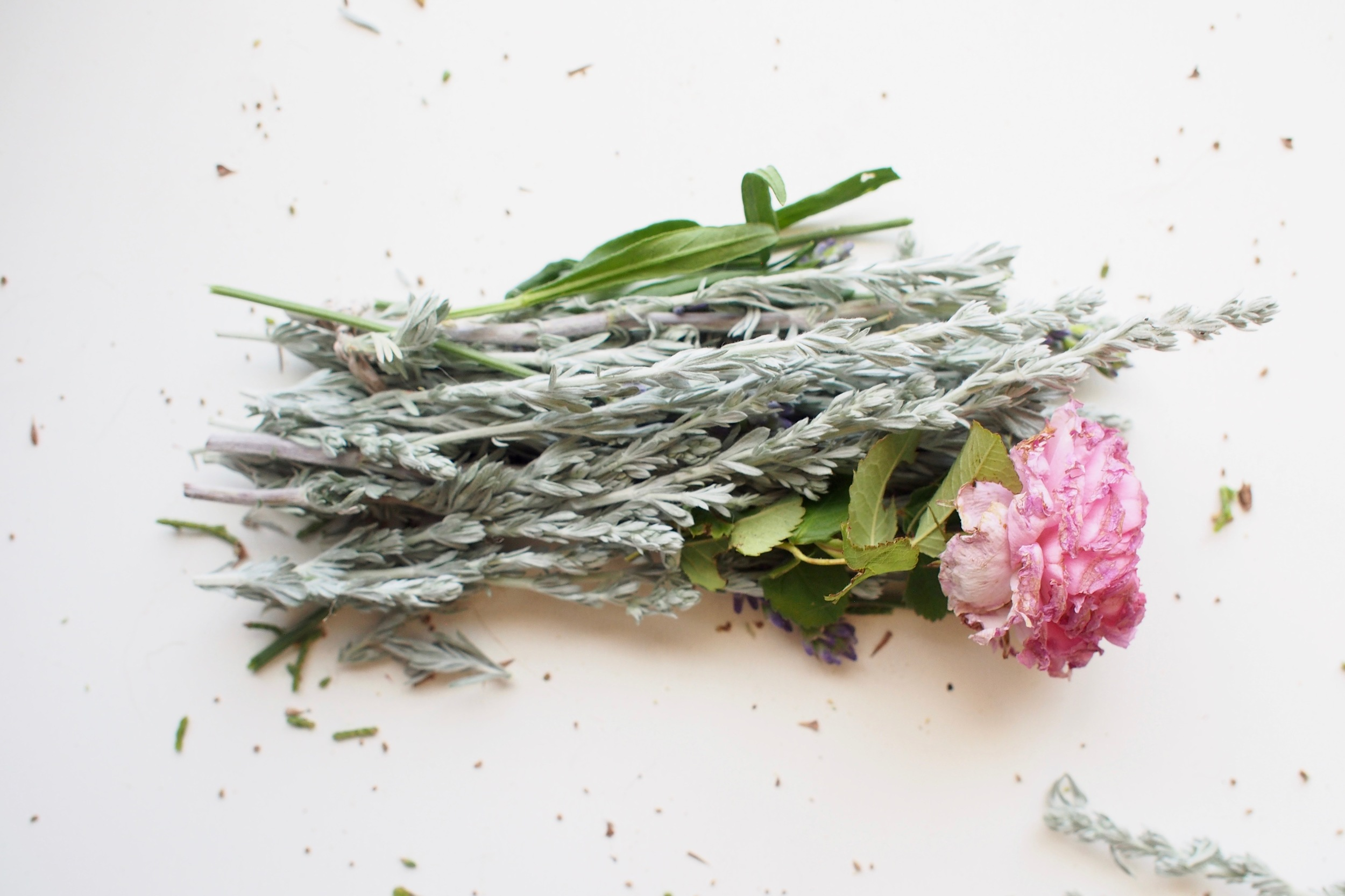 sagebrush, lavender & rose