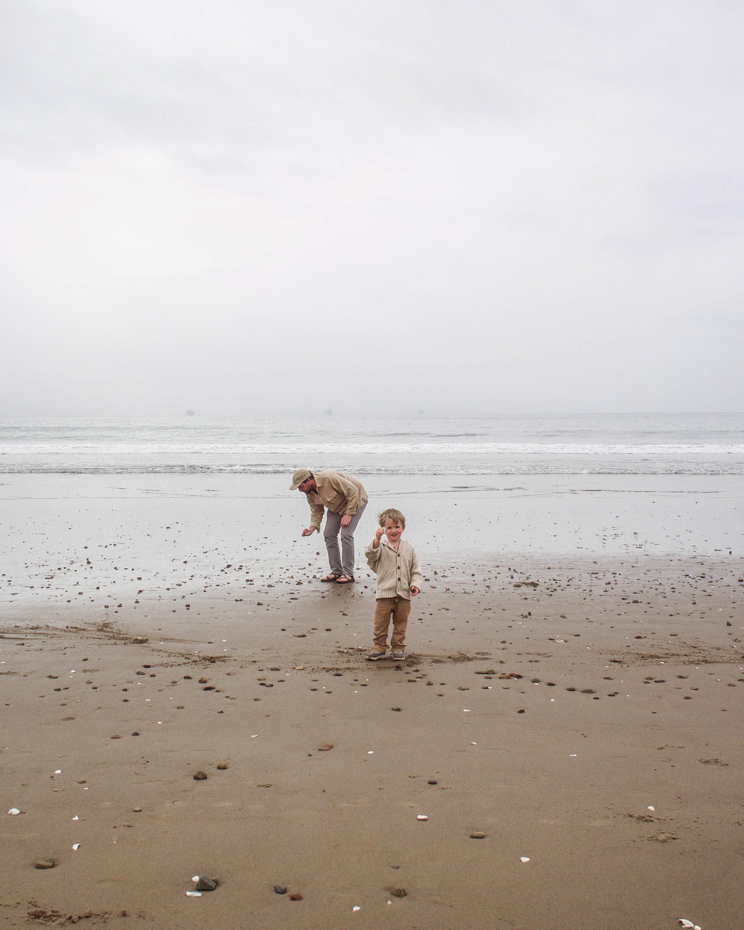 finding sea shells