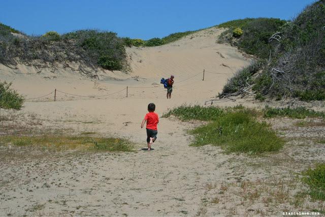 Sanddunesrunning.jpg.jpg