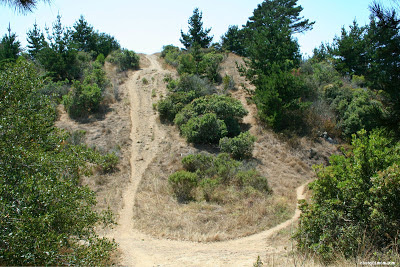 West Ridge Trail (left) Old Country Road (right)