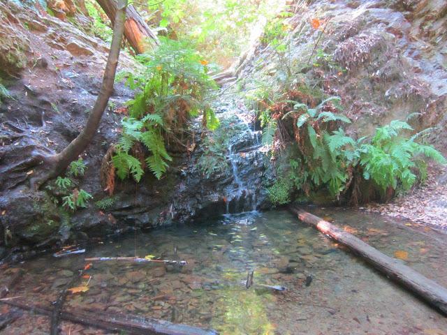 BeFunky_Hiking+baptism+052.jpg
