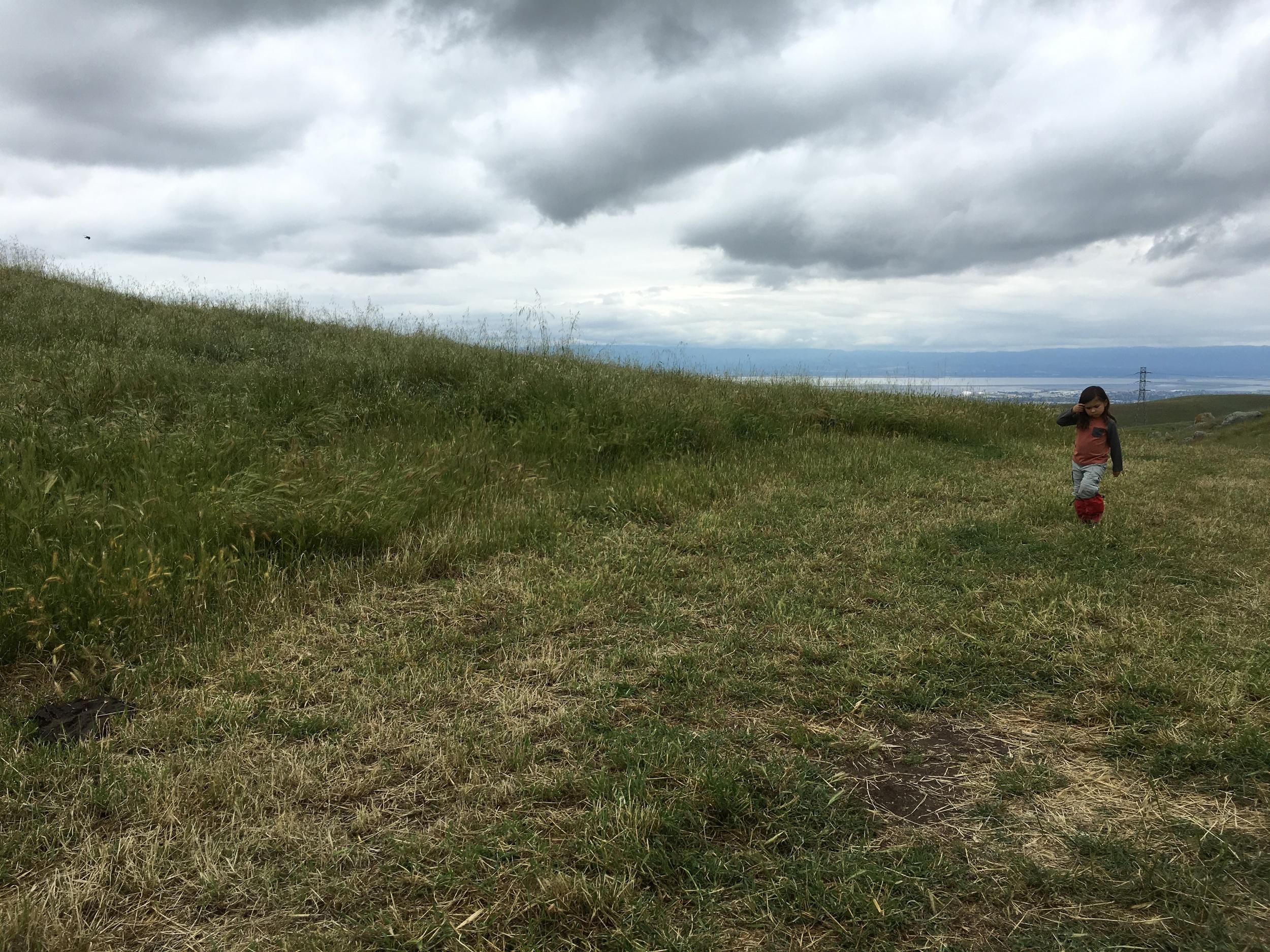 The Golden Eagle Trail ~ Bay Area Ridge Trail