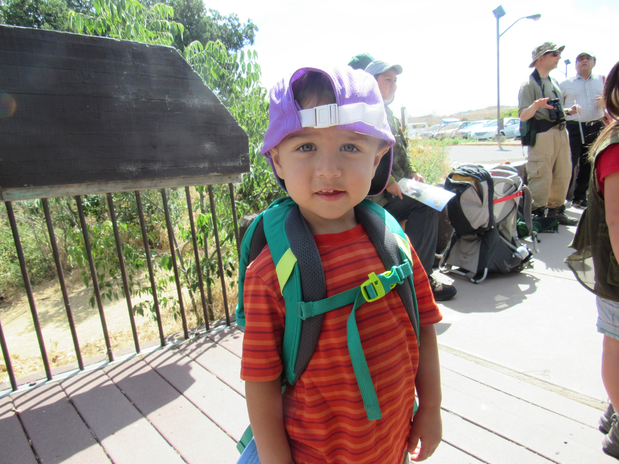 The Littlest Hiker: #ThePach