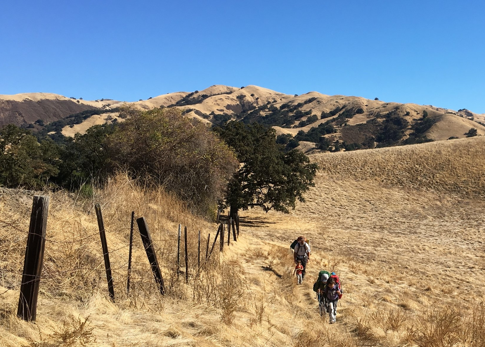 Ohlone Wilderness Trail: Sunol Regional Wilderness