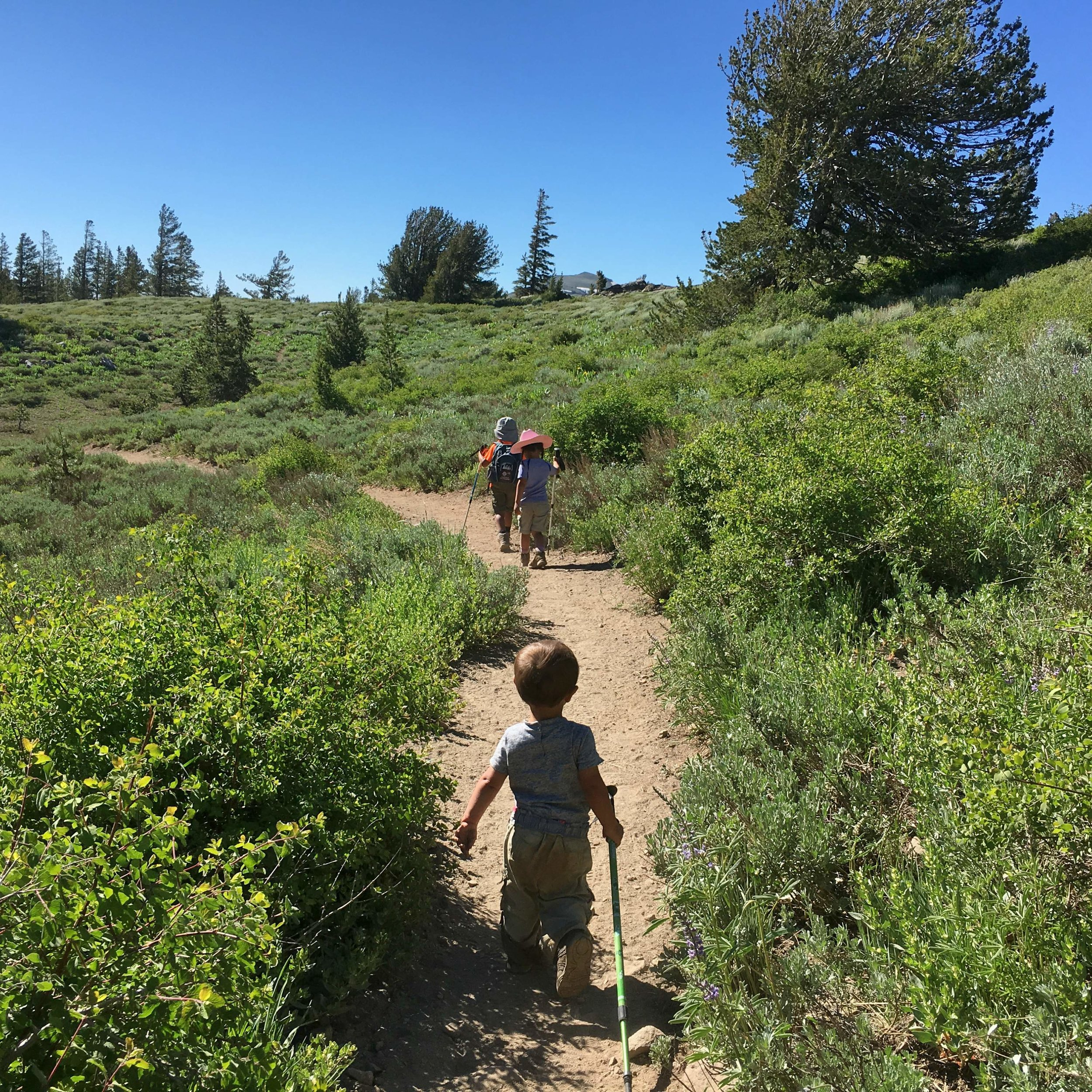 Caminata familiar en el Pacific Crest Trail