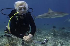 Jillian Morris. Photo credit: Sharks4Kids site