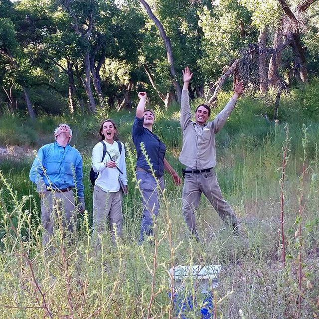 Another year and the #BEMP vegetation survey has come to an end. Thanks to this awesome crew for an enjoyable month. Respect the #bosque and visit often, even many locals don't realize just how important it is to our city. #southwesthorticulture #botany #garden #natural #gardening #ecology #biology #flora #botany #nature #southwest #horticulture #Albuquerque #newmexico #landscapedesign #landscape #landscapes #landscaping #nativeplants