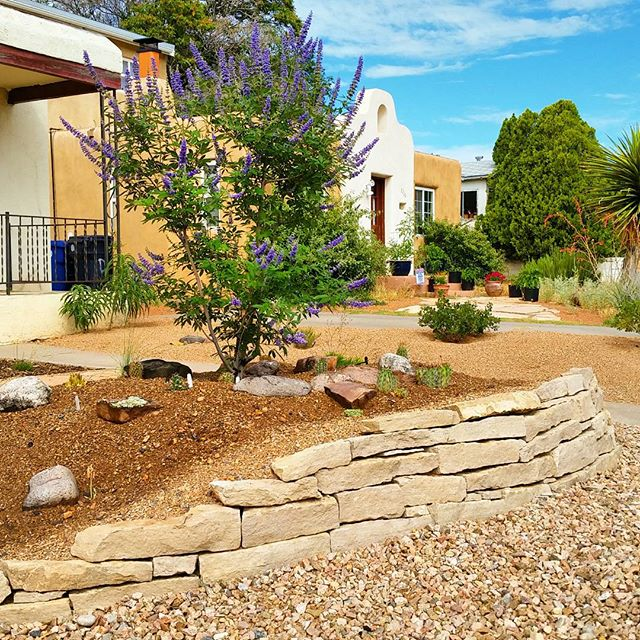 Another look at the  #rock   #garden  and the beautiful cut stone retaining wall we used to retain the  #soil .   #southwesthorticulture   #rockgarden  #naturalstone   #hardscape   #landscape  #design   #landscapedesign   #flora   #cacti
