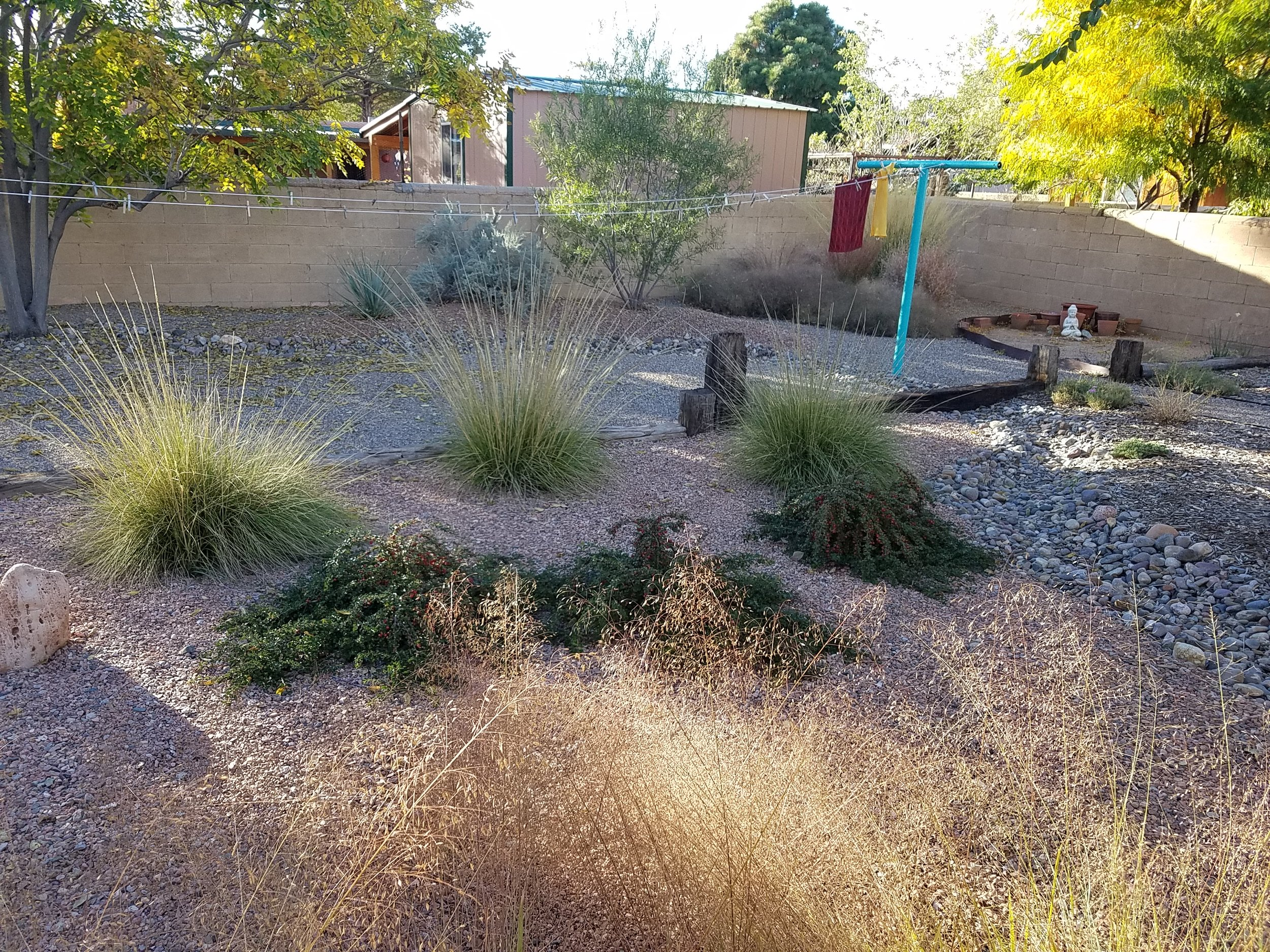 We love our   #fall  #grasses   here at    This landscape has only been in the ground a couple years and has a robust weed free meadow among other things that I'll post later.