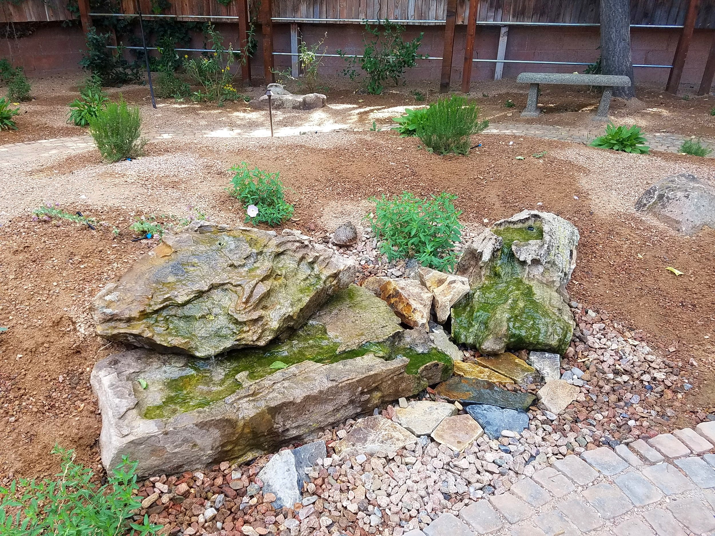 A close up look at the #mossrock #waterfeature that Louis and Mario, our installation experts came up with when the client asked for a low impact water feature that would give birds and her turtles a place to hang out. #southwesthorticulture   #landscape   #landscaping  #landscapedesign #newmexico #Albuquerque