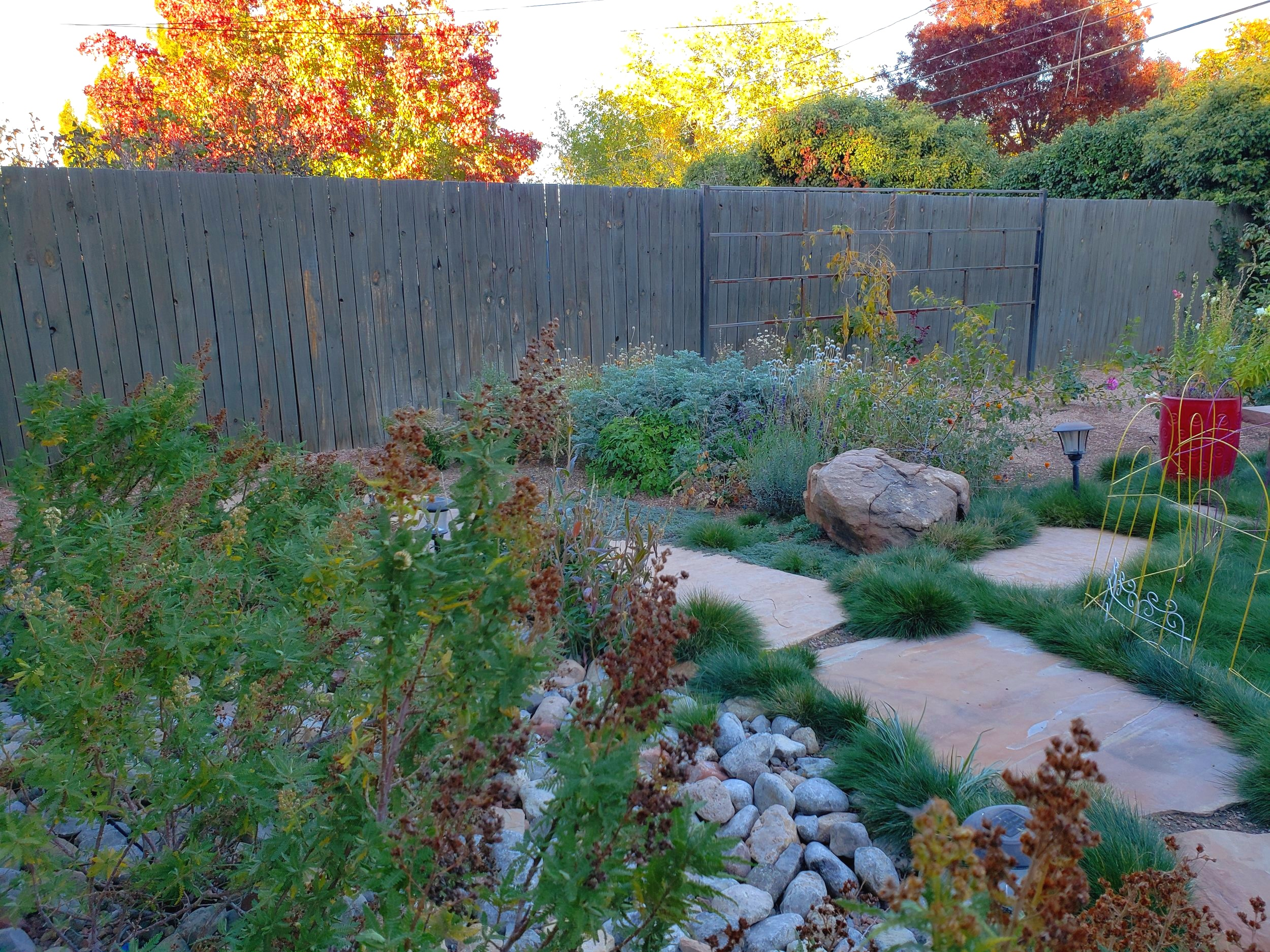 An abundance of native shrubs, wildflowers and groundcovers line the paths of this xeric garden to create different heights, textures and color year round.   #southwesthorticulture #horticulture #landscapes #landscaping #landscapedesign #nativeplants #xeriscaping #xeriscape #waterconservation #gardening #albuquerque #newmexico