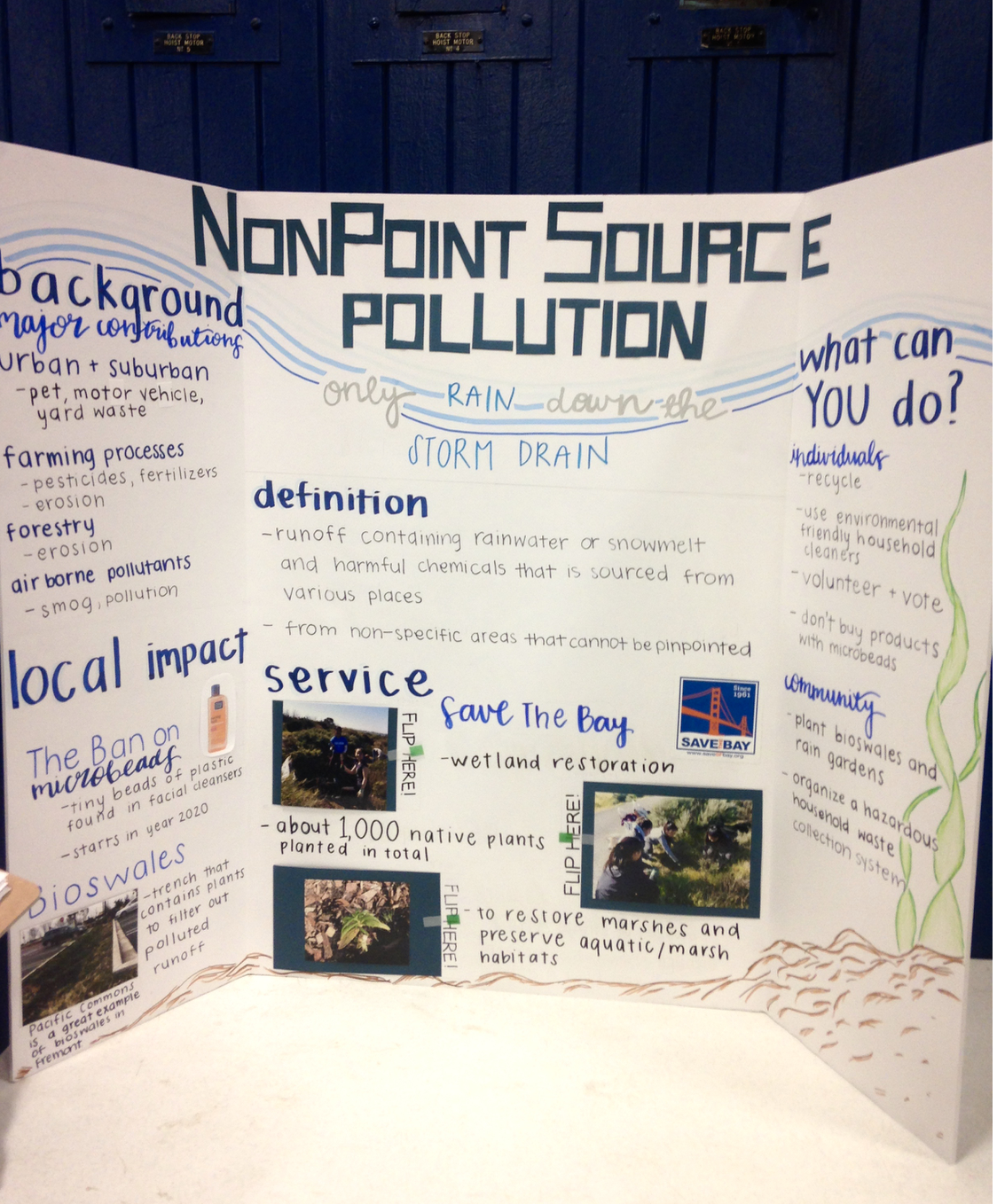 NonPoint Source Pollution - Claire H, Grace Y, Anusri C, Priyanka GProblem: The runoff that washes into the bay contains pollutants, which harms the aquatic ecosystem.Service: They planted bioswales that filter out polluted runoff.