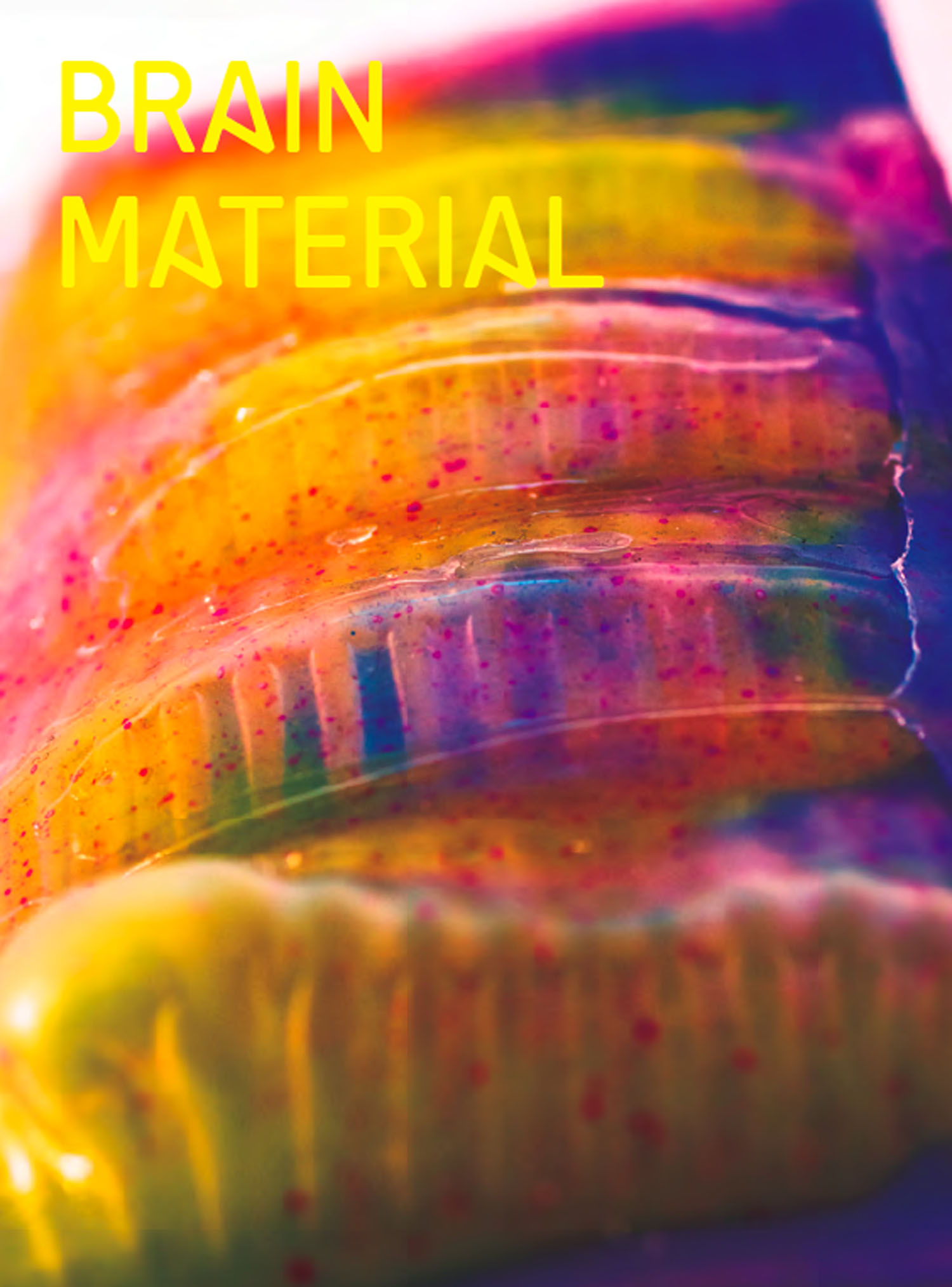 Brain Material.jpg