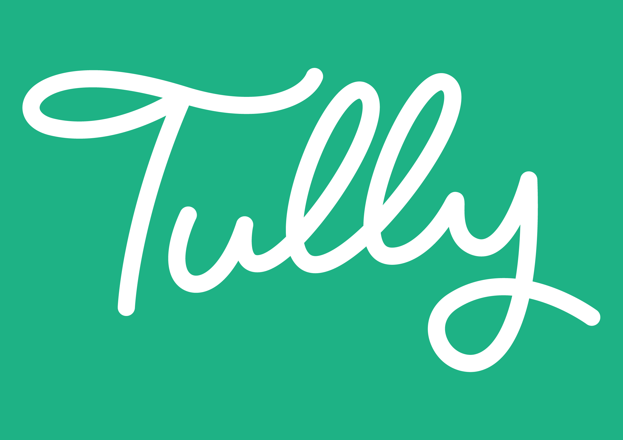Tully-Flat-White-Forest1.png