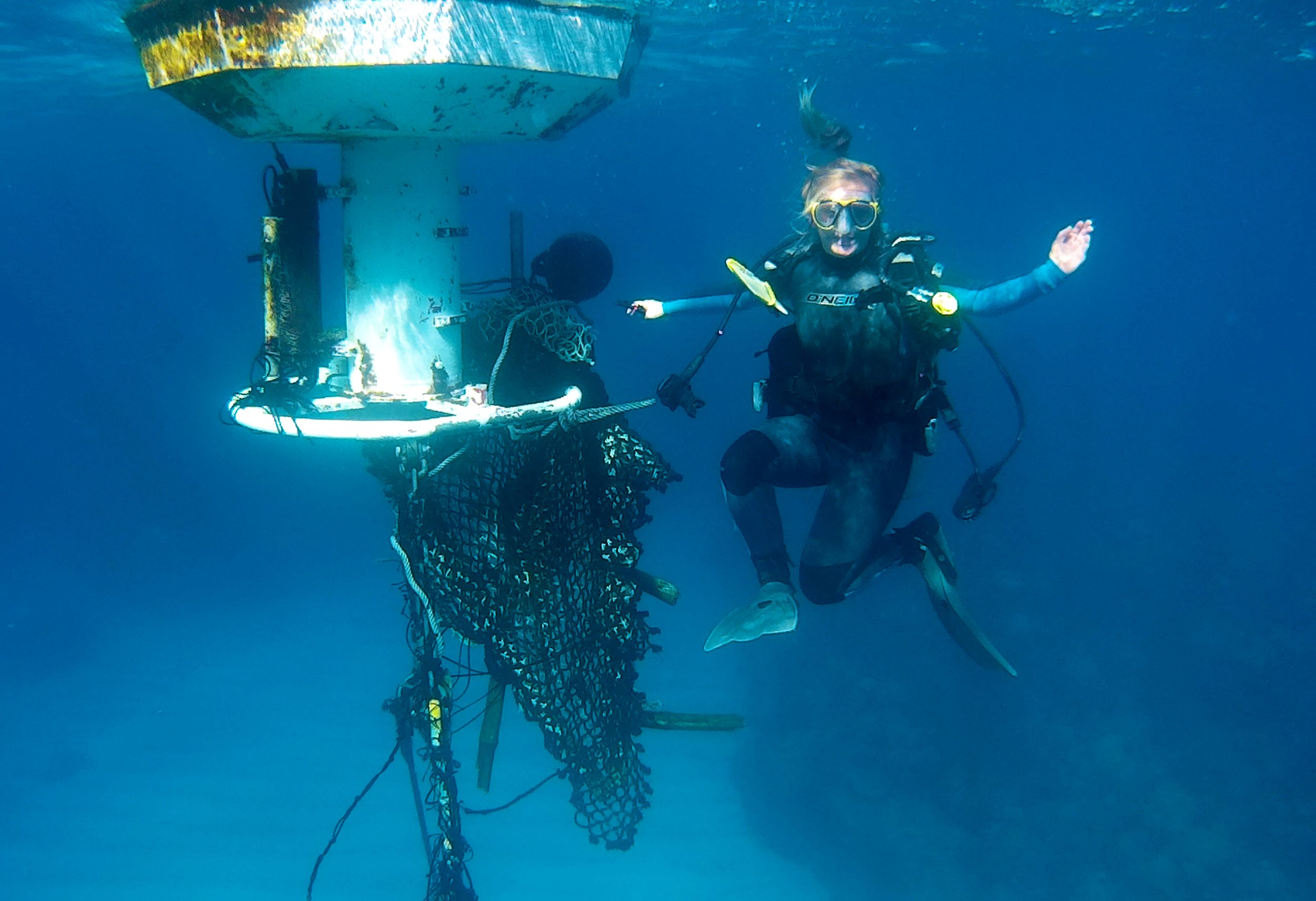 Figure 6. B-team Phd student sara Fowell cleaning off the Hog reef CO2 buoy, Bermuda