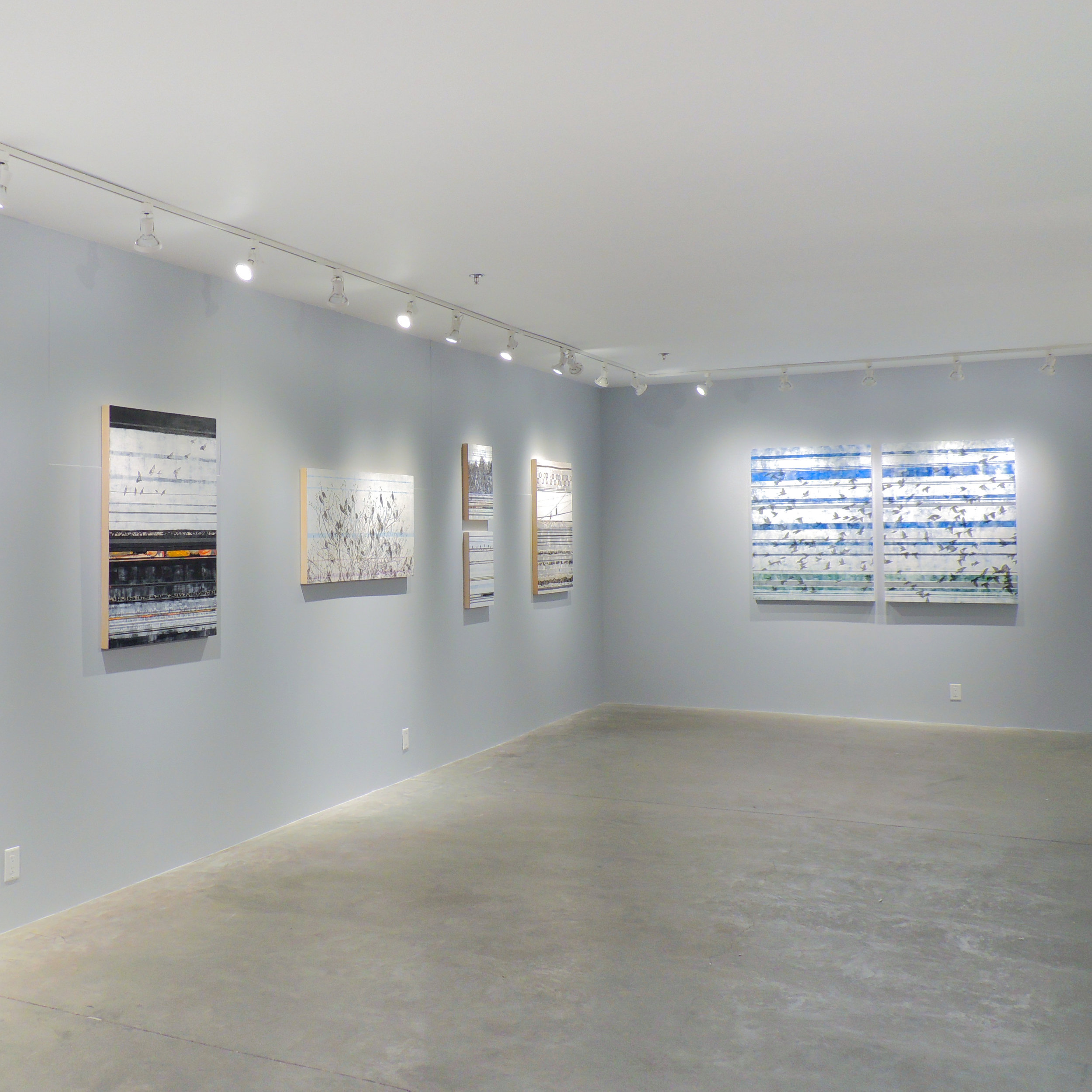 HOLLY HARRISON: THE LANGUAGE OF LINES  February 5 – February 28, 2016