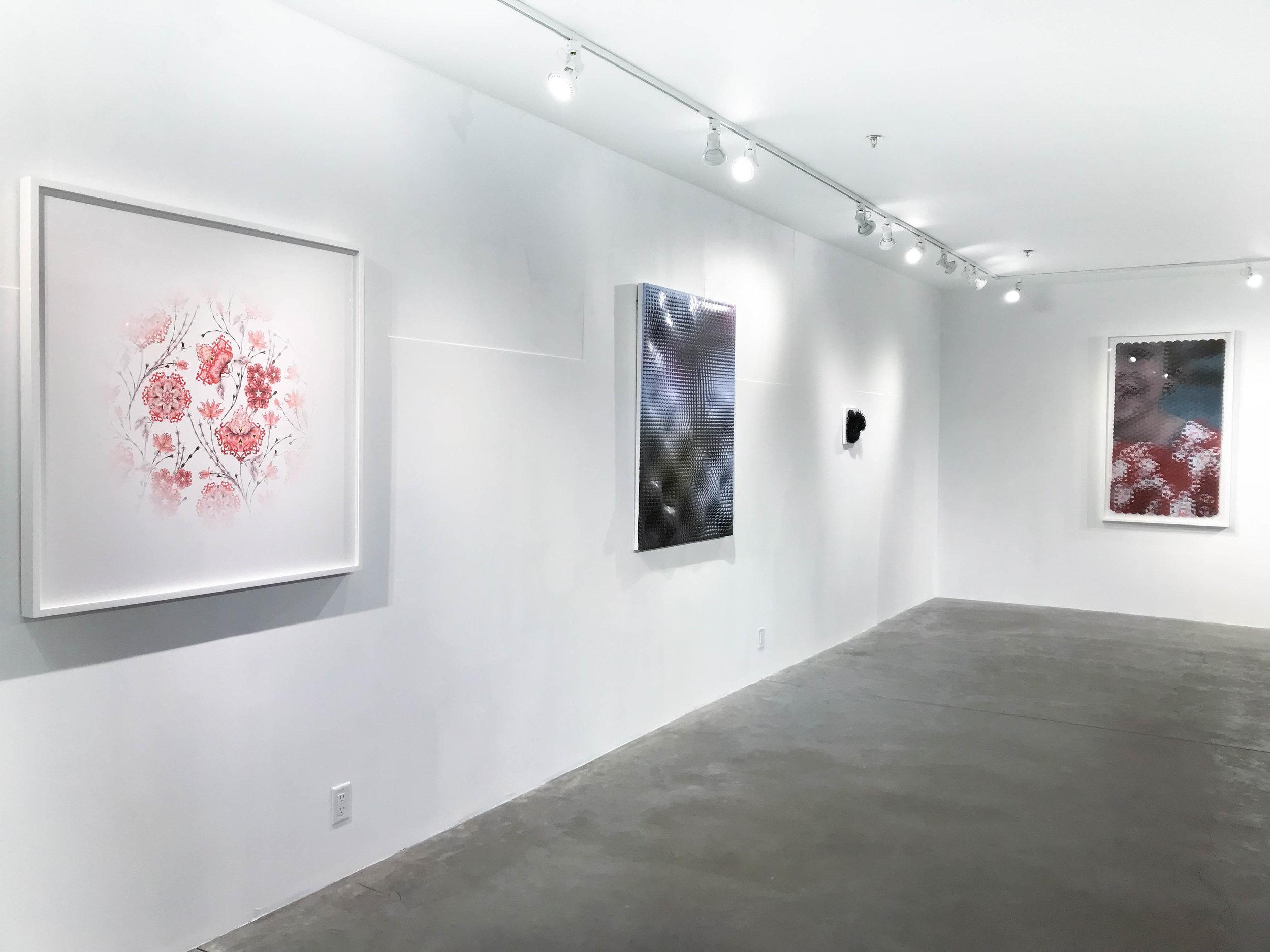 Installation View: The Awakening, November 2017