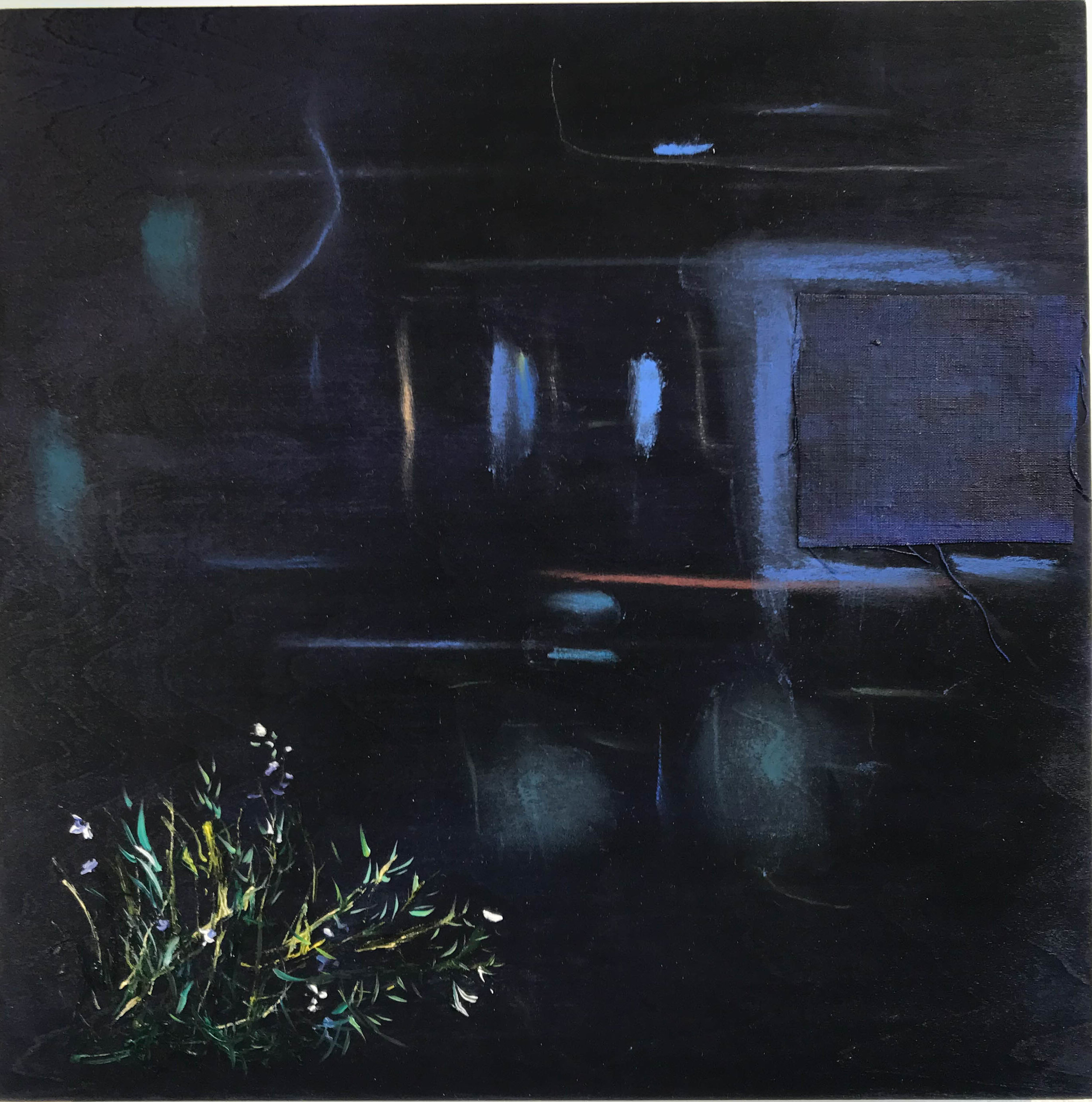Donna Moylan.  Nocturne  .  Acrylic, oil and linen on panel. 10 x 10 in