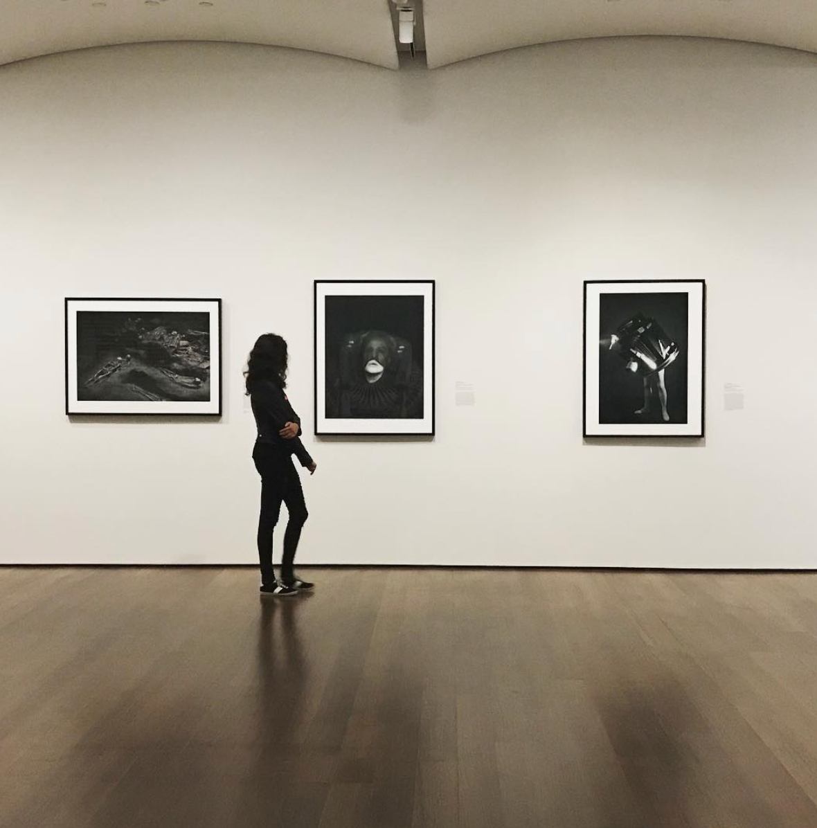 Photo courtesy of Harvard Art Museums instagram @harvardartmuseums