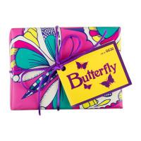Butterfly_web_0.jpg