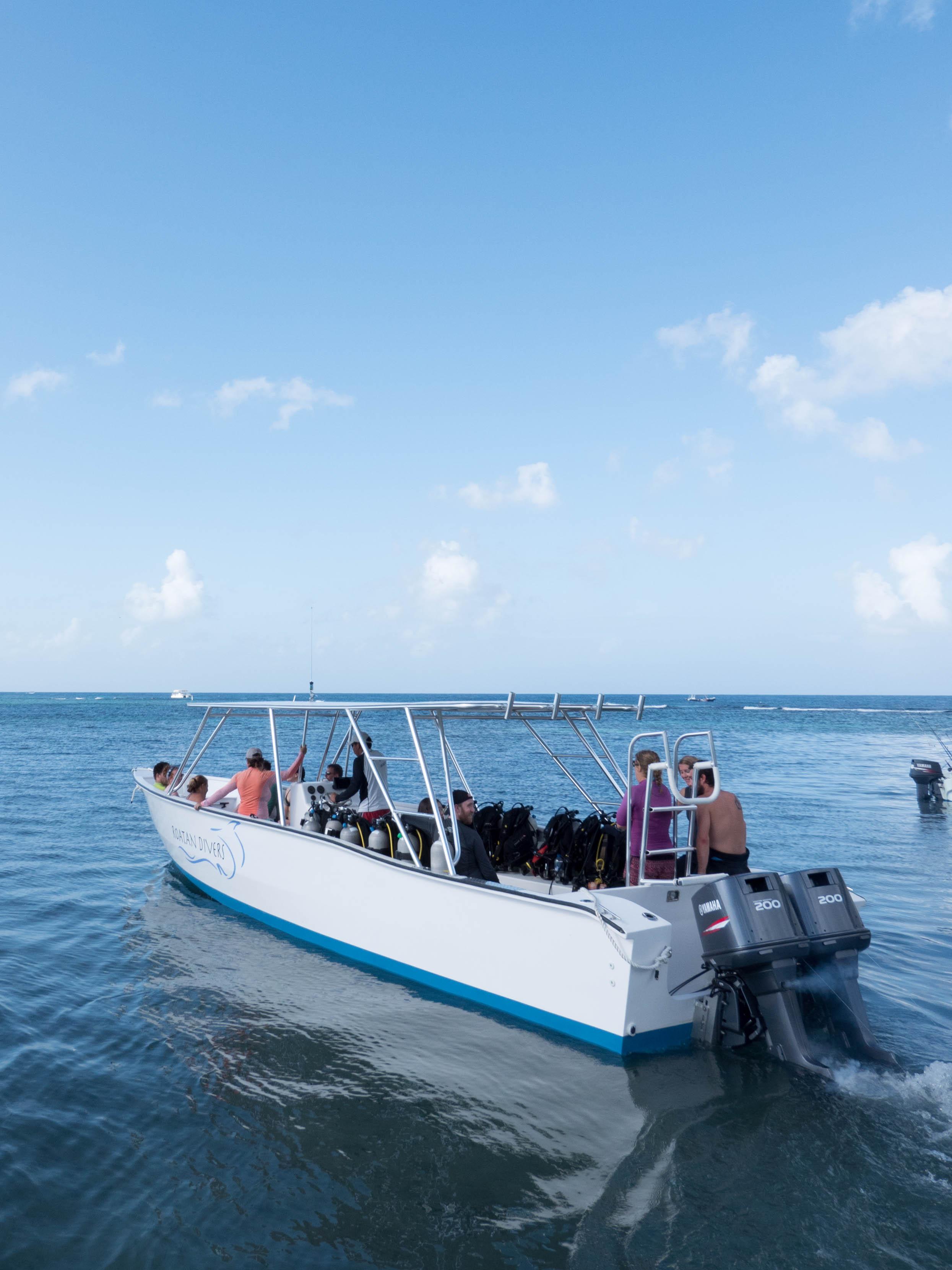 Roatan Divers' boat, Sága