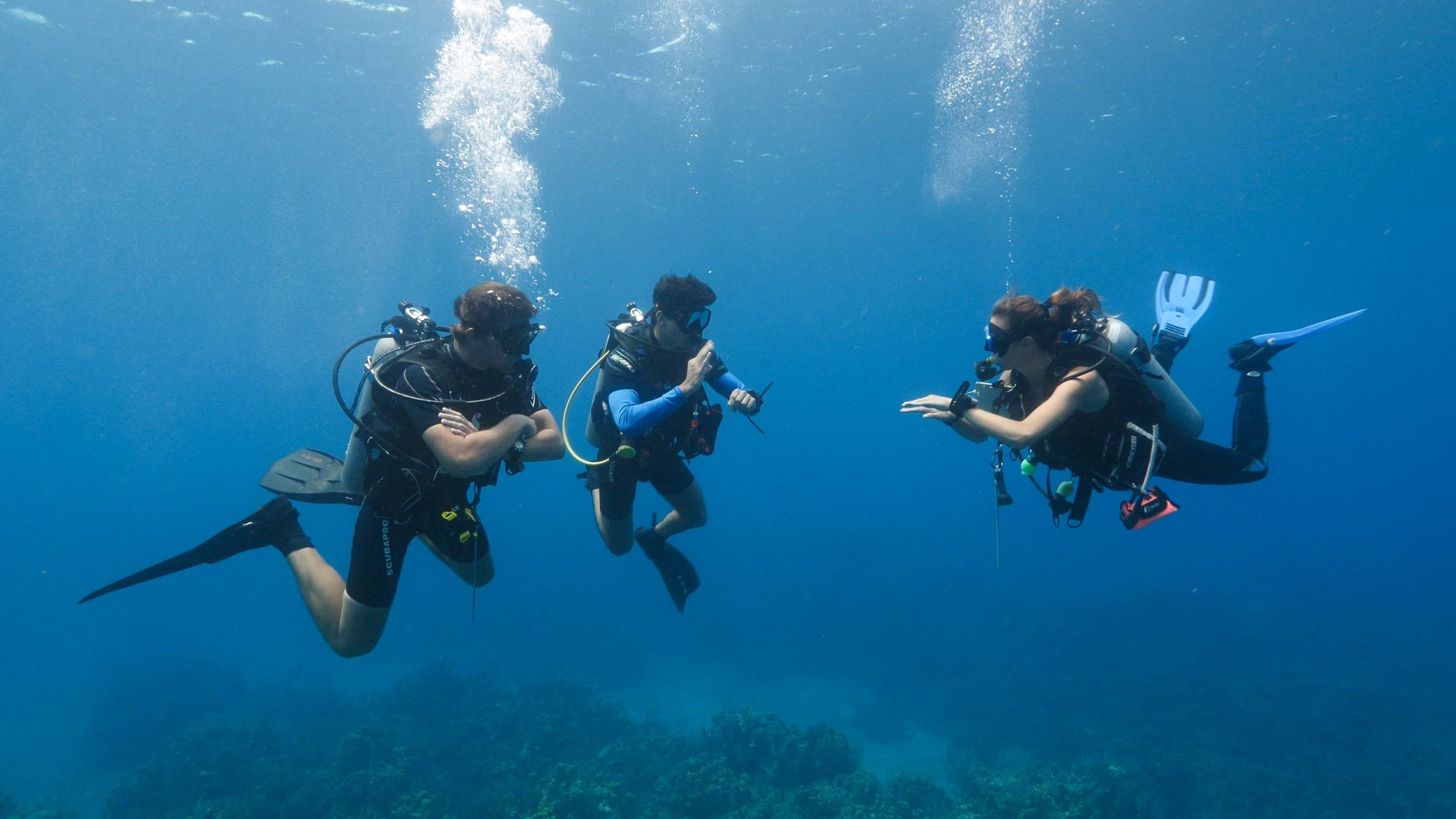 Rescue students on a dive with Roatan Divers