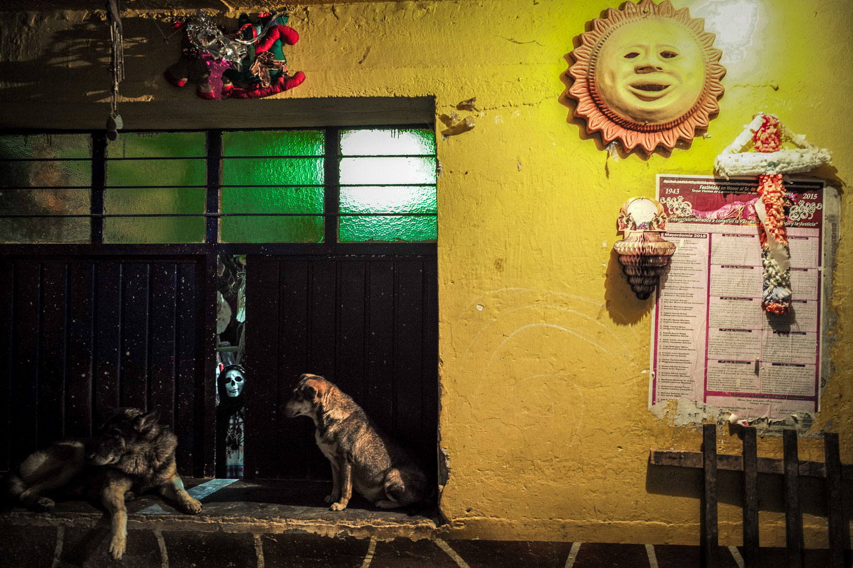 Dia_de_los_Muertos_Dogs_ghost_Day_of_the_dead_DOD_Oaxaca_photo_workshop-64.jpg