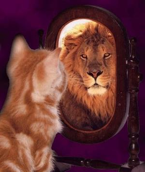 kitten lion.jpg