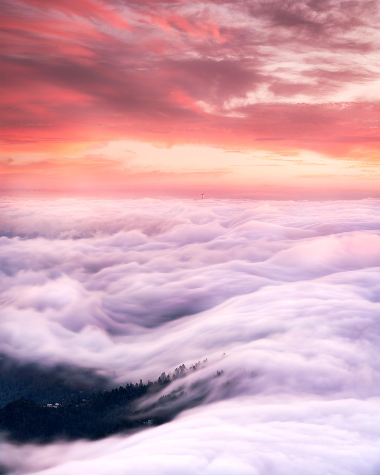 Mount Tamalpais East Peak, California