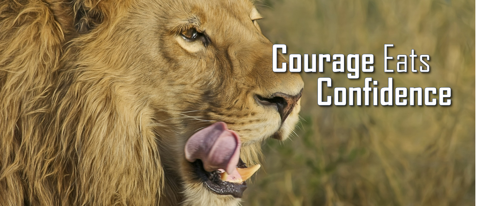 Courage Eats Confidence image.png