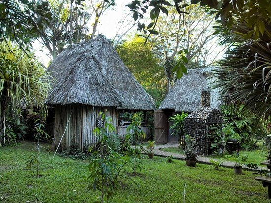 macaw-bank-jungle-lodge.jpg