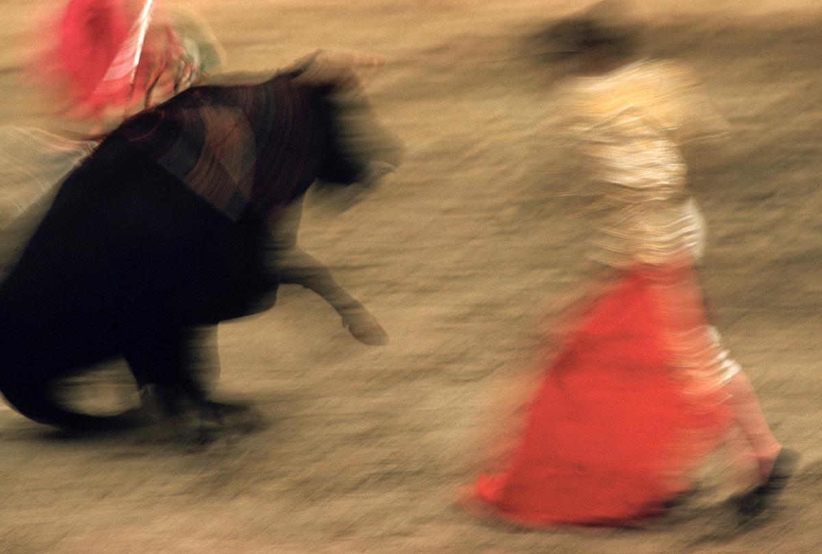 motion-bullfight-color-4.jpg