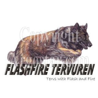 Flashfire Tervuren Logo - Style: colored pencil