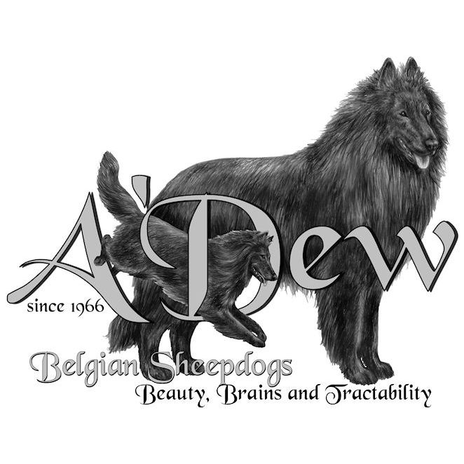 A'Dew Belgian Sheepdogs logo - Style: pencil