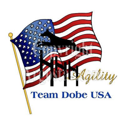 Team Dobe USA Logo