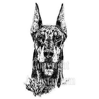 "Doberman ""Chili"" Portrait"