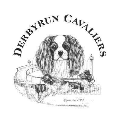 Derbyrun Cavaliers Logo