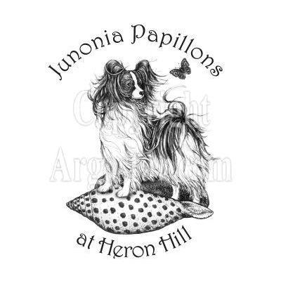 Junonia Papillons Logo