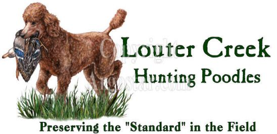 Louter Creek Hunting Poodles Logo