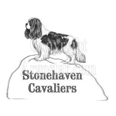 Stonehaven Cavaliers Logo